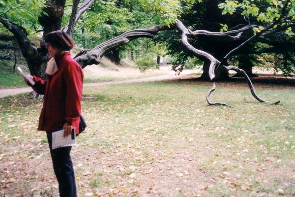 Literarische Spaziergänge