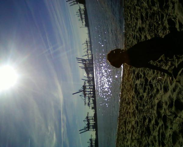 In den Sand gesetzt, Geschichten am Elbstrand